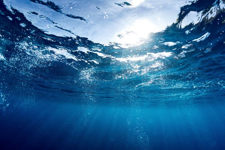 自然葬 海
