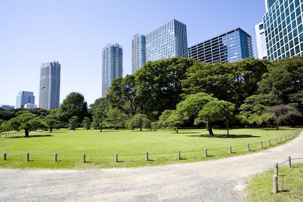 いいお墓 樹木葬 東京