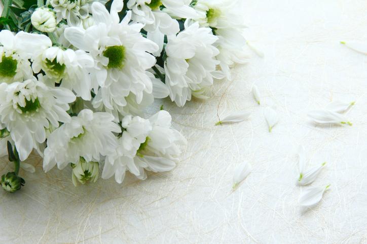 江東区 葬儀社 葬儀屋