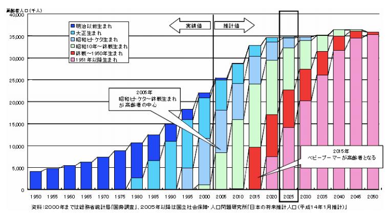 2025年 高齢化 グラフ